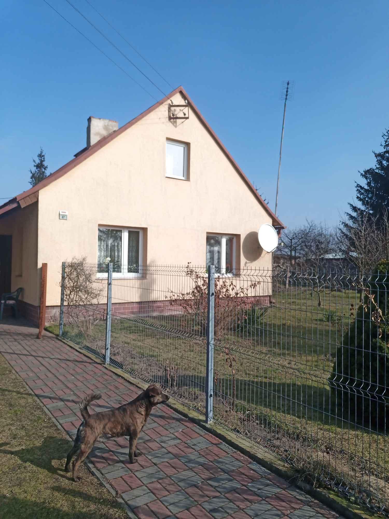 Sprzedam dom w Wilkowicach Wilkowice - zdjęcie 11