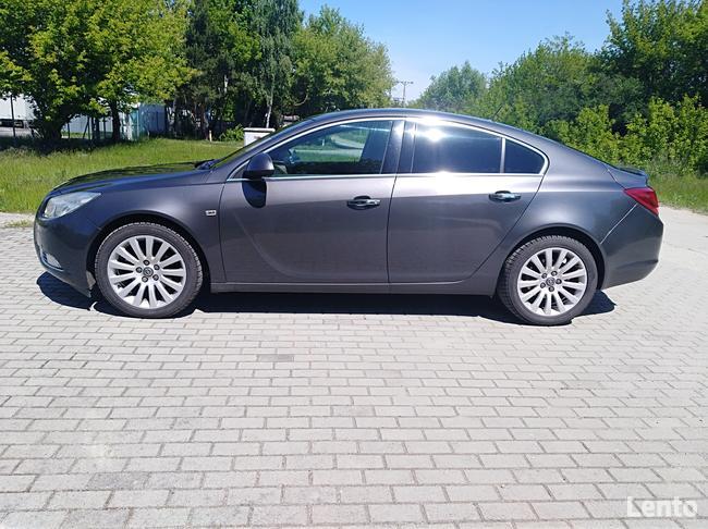 Opel Insignia Brudzew - zdjęcie 2