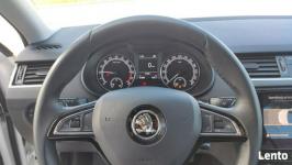 Škoda Octavia 1.6 TDI 115KM AMBITION KOMBI Długołęka - zdjęcie 11
