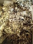 Odpady spożywcze Malbork - zdjęcie 2