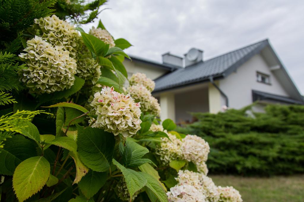 Rodzinny dom w spokojnej okolicy Świdnik Świdnik - zdjęcie 5