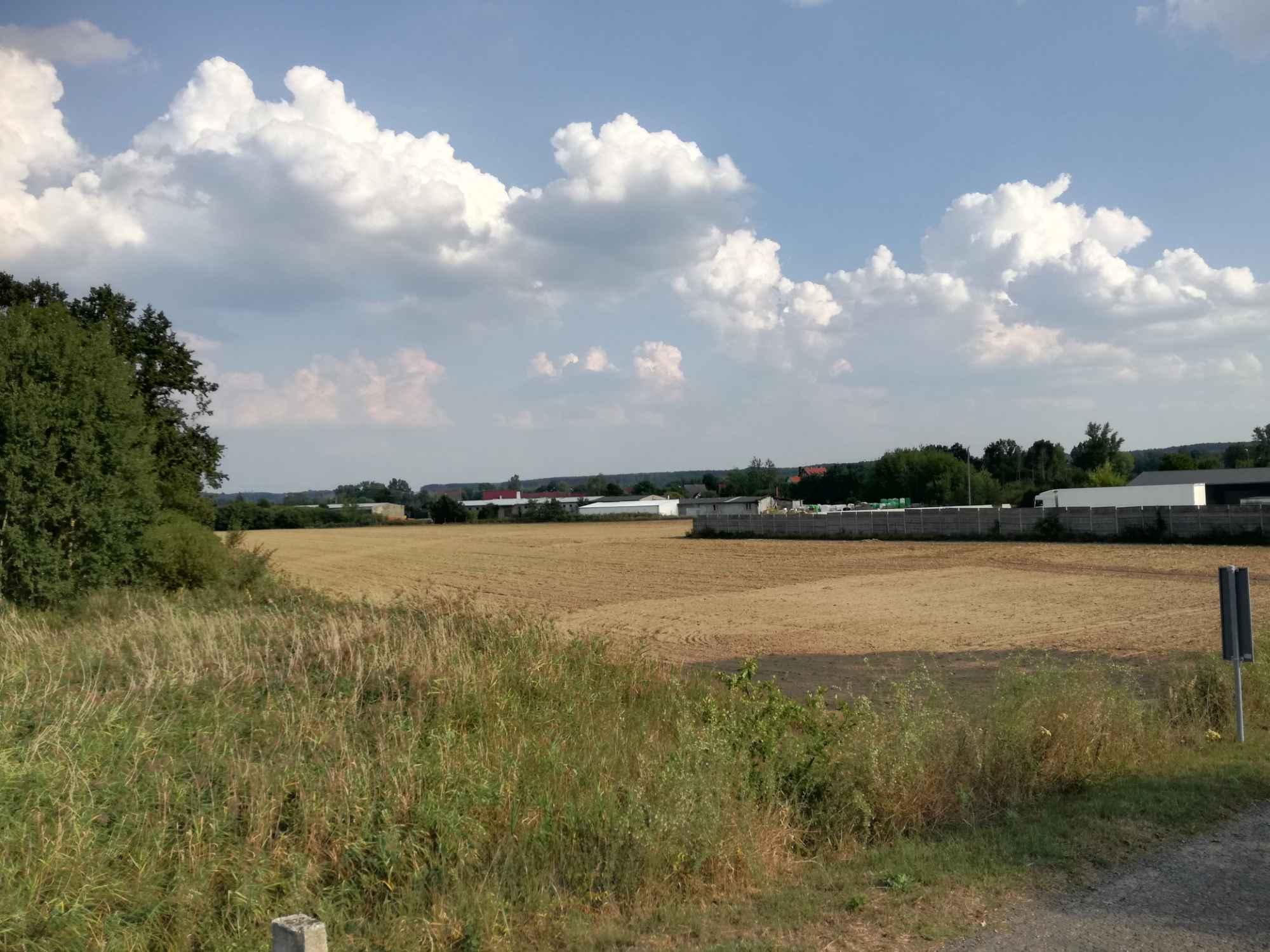 Działka rolna 2,58 ha + łąka 0.89 ha Krosno Odrzańskie - zdjęcie 1