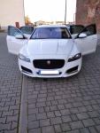 Jaguar XF 260 2.0D Prestige !!! Przebieg 39000km! Siedlce - zdjęcie 2