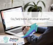 Prowadzenie Facebook dla firm, prowadzenie Fanpage już od 199zł Jelenia Góra - zdjęcie 9