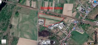 Działka rolna 2,58 ha + łąka 0.89 ha Krosno Odrzańskie - zdjęcie 7