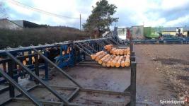 Linia sortowania drewna Gorzów Wielkopolski - zdjęcie 4