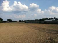 Działka rolna 2,58 ha + łąka 0.89 ha Krosno Odrzańskie - zdjęcie 3
