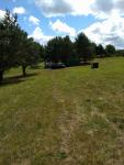 Działkę rolną ziemia sprzedam 12000 m2 Gardna Wielka - zdjęcie 5