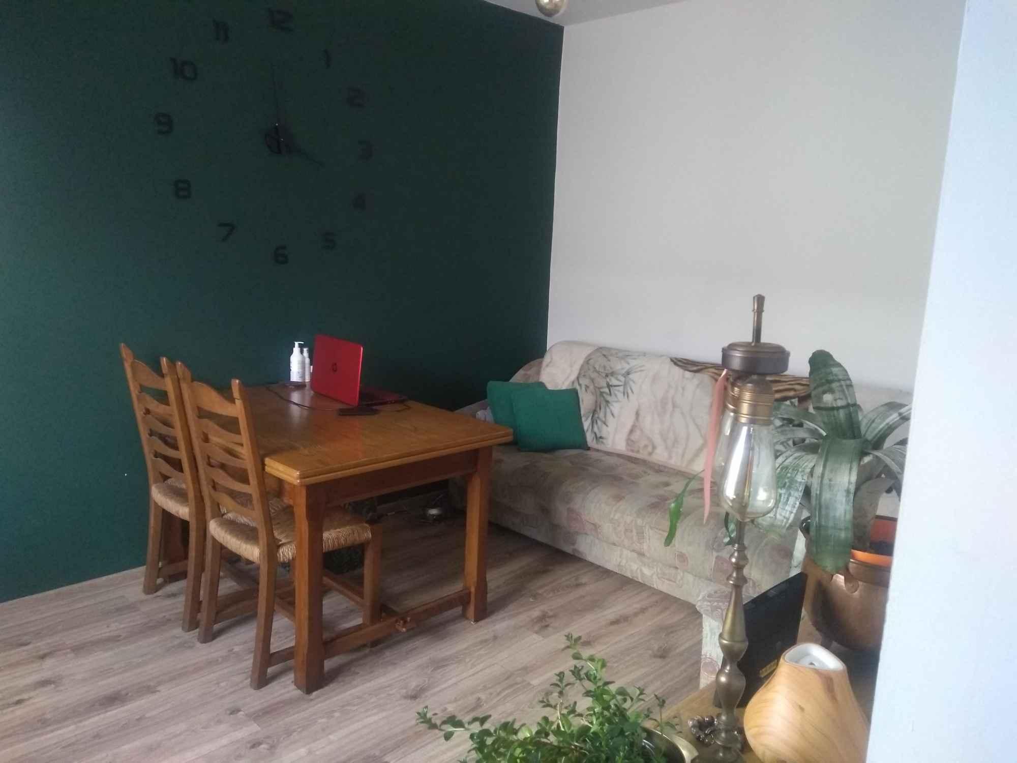 Mieszkanie bezczynszowe Dźwierzuty - zdjęcie 3