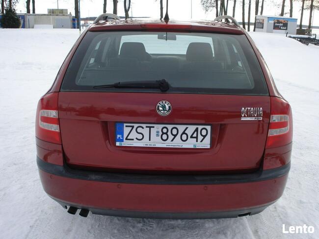 Škoda Octavia Super stan.Serwis. Morzyczyn - zdjęcie 6