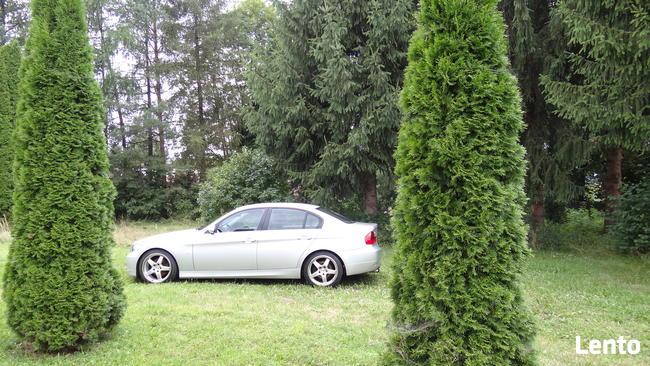 2005 BMW e90 325i 218 koni, N52, 6 biegow, skora, xenon Sanok - zdjęcie 11
