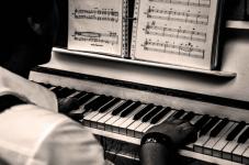 Strojenie Pianin / Fortepianów + Renowacja-Regulacja Śródmieście - zdjęcie 2