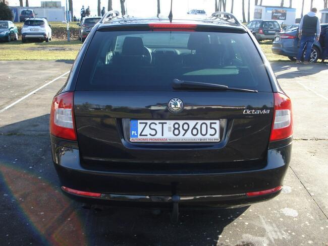 Škoda Octavia Morzyczyn - zdjęcie 6