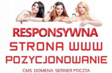 Strona internetowa -Tworzenie stron www DLA FIRM Katowice - zdjęcie 1