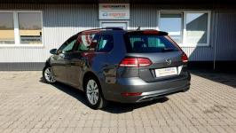 Volkswagen Golf Rzeszów - zdjęcie 3