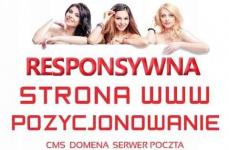 Strona internetowa -Tworzenie stron www DLA FIRM +host +domena +FB +FV Katowice - zdjęcie 1