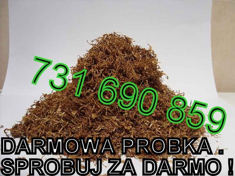 Tytoń Davidoff Tennessie RGD LM Marlboro DARMOWA PRÓBKA SPRAWDŹ tyton Mokotów - zdjęcie 1