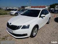 Škoda Octavia 1.6 TDI Salon PL! 1 wł! ASO! FV23%! Transport GRATIS Warszawa - zdjęcie 1