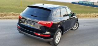 Audi Q5 4x4 Ledy Xenon Skóry Navi Gniezno - zdjęcie 6