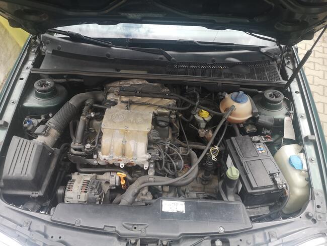 Volkswagen Golf 4 Cabrio 1,6 benzyna Zielona Góra - zdjęcie 4