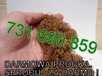 Tytoń Davidoff Tennessie RGD LM Marlboro DARMOWA PRÓBKA SPRAWDŹ tyton Mokotów - zdjęcie 2