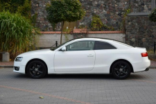 Audi A5 Coupe 2.0TDi 170KM Manual 2009r. Skóra Xenon LED Kampinos - zdjęcie 4