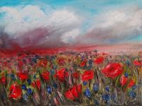 Kwiaty polne – Maki Szczecin - zdjęcie 1