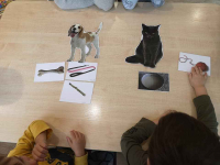 Effectis - PRZEDSZKOLE TERAPEUTYCZNE dla dzieci z autyzmem Ursynów - zdjęcie 4