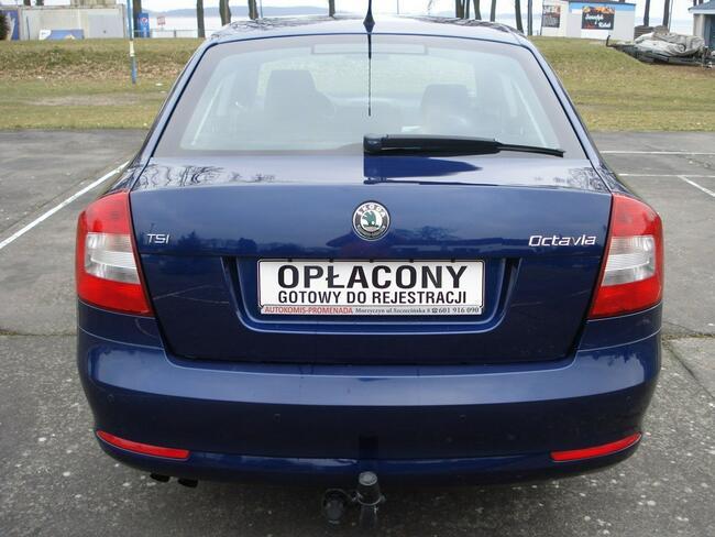 Škoda Octavia Ładna,zadbana. Morzyczyn - zdjęcie 6