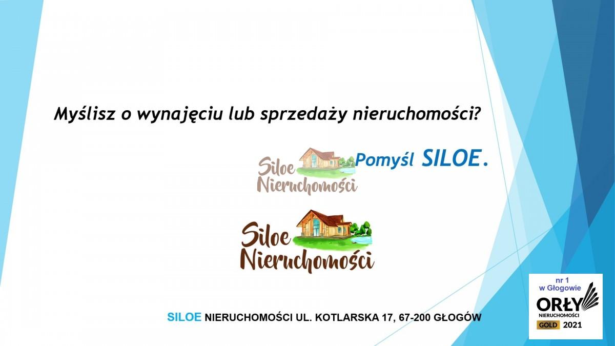 Działka (usługowa) z budynkiem gospodarczym Bogdaszowice - zdjęcie 9