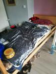 Łóżko szpitalne Sieradz - zdjęcie 1